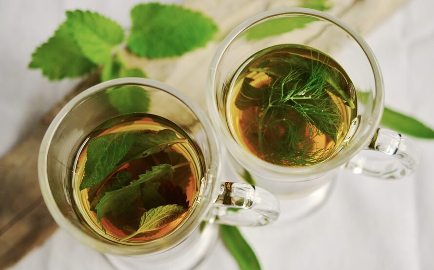 herbal-tea-herbs-tee-mint-159203-large