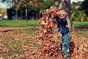 jesen_imunita